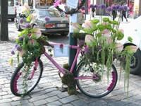 Фестиваль цветов в столице Финляндии