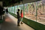 Тропический дом животных Tropicario